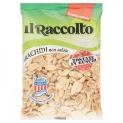Arachidi Non Salate Tostate In Guscio Eurocompany Il Raccolto